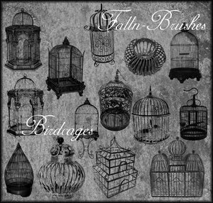 birds cages birdcages