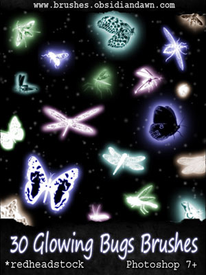 bugs animals nature glowing flying insects dragonflies  fireflies moths butterflies glowing wings