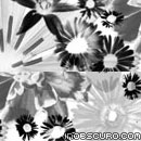 Photoshop: Flowers (daisies and other flowers)