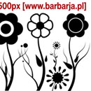 Photoshop: Barbarja floral 02 (fleurs etc…)