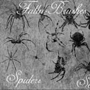 Photoshop: Spider Photoshop Brushes Set 1 (various spiders)