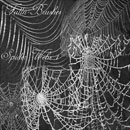 Photoshop: Spider Web Photoshop Brushes Set 1 (toiles d'araignées)