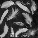 Photoshop: Feathers Photoshop Brushes Set 1 (plumes et duvet)
