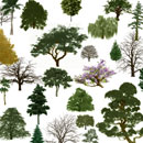 Photoshop: Trees (various trees, including a bonsai, a palm, numerous dead or leafless trees, tons of