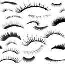Photoshop: Eyelashes (Various shapes of eyelashes, made up of mostly open eyes, and most taken straight on (front view). A few closed, a few lower lashes, one or two from a side-ish view, and a few sets of funky/wild eyelashes. Includes both left and right eyes. About 900 pixels in width. )