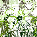 Photoshop: Vector foliage & plants (Feuillages et plantes en dessins vectoriels. Herbes, fleurs, branches de cerisiers en fleurs, bambous, feuilles de vigne... envrion 900x900 pixels.)