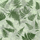 Photoshop: Ferns (various species, sizes, and orientations of ferns)